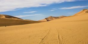 Spuren im Sand von Algerien